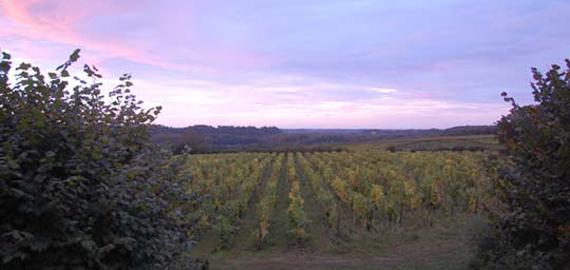 Vernou-sur-Brenne